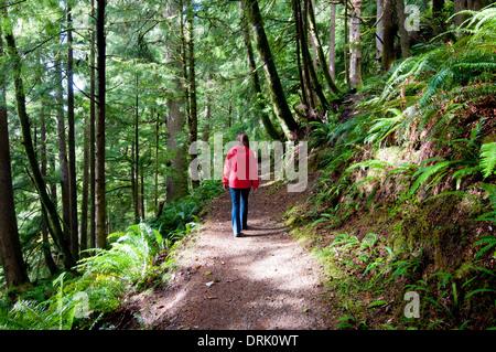 Randonnée sur le sentier forestier femme dans la chaîne côtière de l'Oregon près de Salem (MR) Banque D'Images