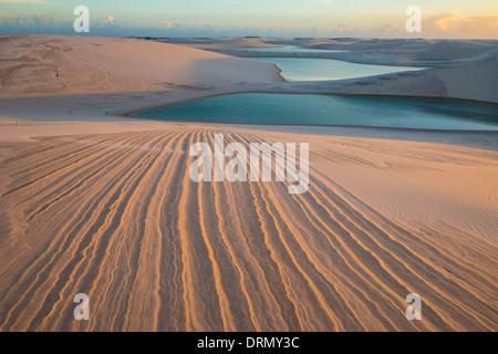 Piégés dans des étangs de pluie dunes blanches, Parc National Lencois Maranhenses, le Brésil, l'Océan Atlantique Banque D'Images