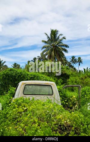 Une voiture rouille repris par la végétation tropicale. Rarotonga, îles Cook, Pacifique Sud. Banque D'Images