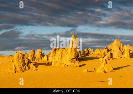 Les formations calcaires Pinacles au coucher du soleil dans le Parc National de Nambung, Australie occidentale, Banque D'Images