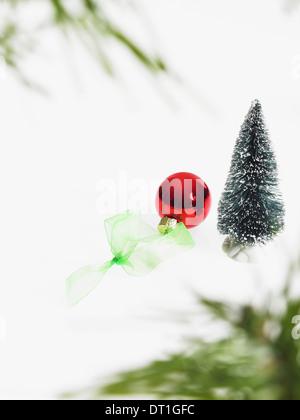 Feuillage vert feuille morte et décorations une branche d'arbre de pin avec les aiguilles vertes décorations de Banque D'Images