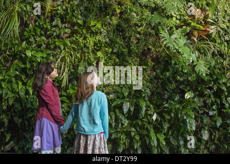 Mode de vie urbain deux enfants se tenant la main et à la recherche jusqu'à un mur couvert de feuillage de plus Banque D'Images