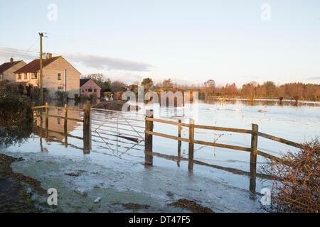 De fortes inondations dans le village de East Lyng le 7 février 2014. Eau des rivières Parrett et le ton sont sorties Banque D'Images