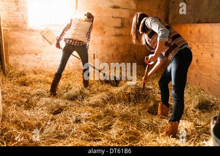 Deux jeunes femmes faire lit de paille en stable Banque D'Images