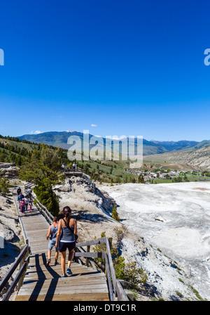 La demande parallèlement à la terrasse principale à Mammoth Hot Springs Terrasses, Parc National de Yellowstone, Banque D'Images