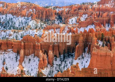 L'hiver dans le Parc National de Bryce Canyon, Utah - USA Banque D'Images