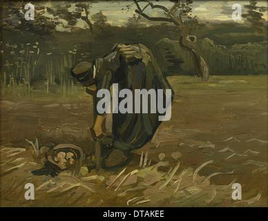 Paysanne, à la récolte des pommes, 1885. Artiste: van Gogh, Vincent, (1853-1890) Banque D'Images