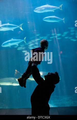 Levage père jeune fils à regarder les poissons dans l'aquarium Banque D'Images