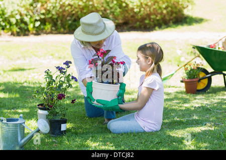 Grand-mère et petite-fille engaged in gardening Banque D'Images