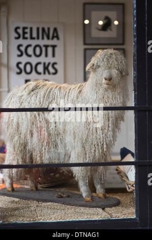 La laine de chèvre dans l'affichage vitrine à Malton North Yorkshire Angleterre UK Banque D'Images