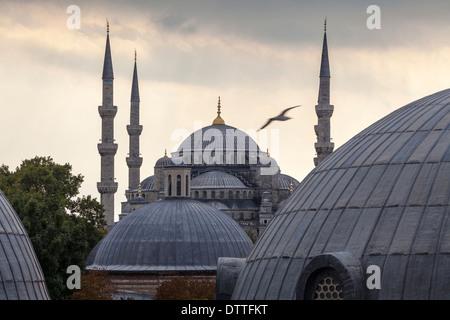 Les dômes et les tours de la Mosquée Bleue, Istanbul, Turquie Banque D'Images