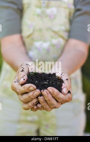 Image Gros plan femme de mains tenant le compost. Senior female hands holding une poignée de compost de tourbe