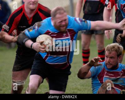 Grand joueur de rugby avant le chargement de l'avant, avec le flou, Bude, Cornwall, UK Banque D'Images