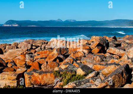 Plages Réserver 140 ha est une réserve naturelle côtière de l'est de la Tasmanie, en Australie, à 190 km au nord-est de Hobart et 180