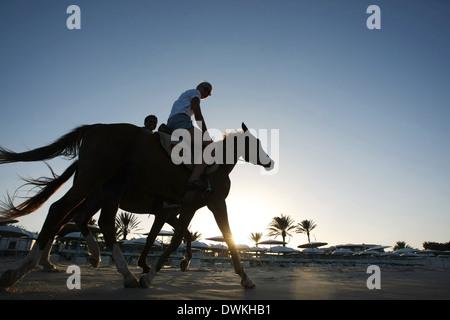 Une femme à cheval sur la plage de Sousse, Tunisie. Banque D'Images
