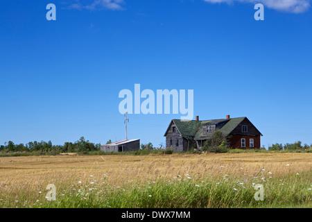 Homestead farm abandonnés dans le nord du Michigan Banque D'Images