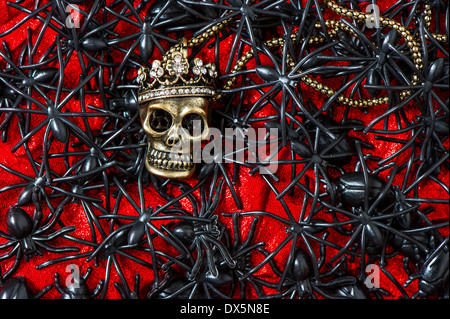Crâne avec beaucoup d'araignée noire et asiatique sur fond rouge sanglant halloween concept.