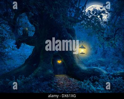 Nuit Magique avec un peu d'accueil dans le tronc d'un vieil arbre dans la forêt enchantée. Banque D'Images