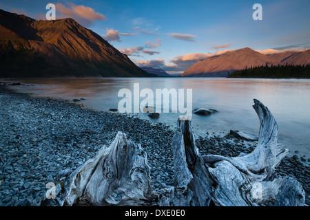 À l'aube du lac Kathleen, Réserve de parc national Kluane, Yukon, Canada Banque D'Images