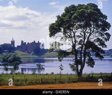 Vue d'été à Linlithgow loch vers le Palais de Linlithgow Lothian Ouest Ecosse Banque D'Images