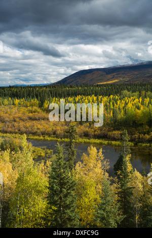 Couleurs d'automne de la forêt boréale dans la rivière Stewart Valley, Territoire du Yukon, Canada Banque D'Images