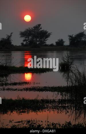 Coucher de soleil sur le fleuve Zambèze, Mana Pools National Park, Zimbabwe. Banque D'Images