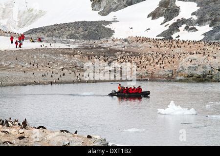 Le tourisme antarctique parmi le paysage de l'Antarctic iceberg, glacier, la glace, et le pingouin de touristes Banque D'Images