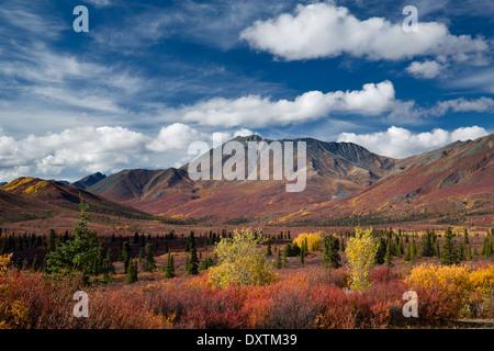 Couleurs d'automne et de la cathédrale de la montagne, le parc territorial Tombstone, Yukon, Canada Banque D'Images