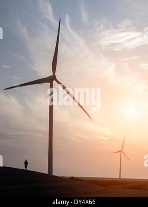 L'homme se promener près des éoliennes et Escaut Eidersperrwerk conçu pour protéger les Pays-Bas contre les inondations. Banque D'Images
