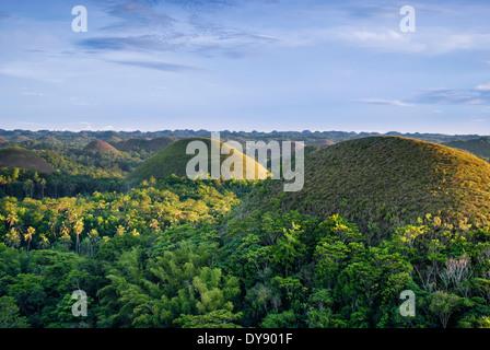 Philippines, Bohol, collines de chocolat Banque D'Images