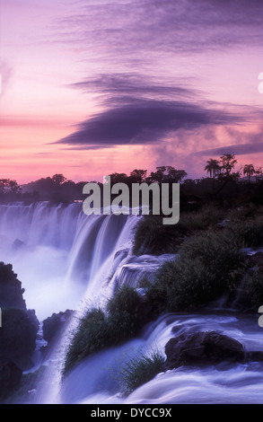 Le Parc National des chutes d'Iguazu, Argentine Banque D'Images