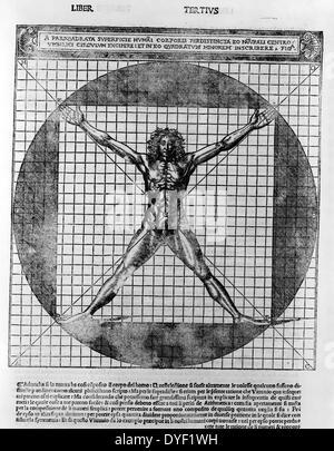 Un pariquadrata perdistincta humai superficiaire corporis eo naturali centro umbilici excipere circulum - et in Banque D'Images