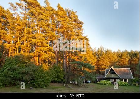 Un Sodyba, campagne typiques en bois ou maison d'été dans les régions rurales de la Lituanie. On trouve dans l'Europe Banque D'Images