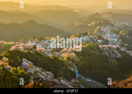 Yoshinoyama Japon au printemps
