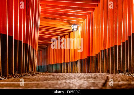 Fushimi Inari Taisha torii gates à Kyoto, au Japon. Banque D'Images
