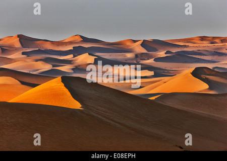 Paysage de dunes de sable dans le désert arabique. Banque D'Images