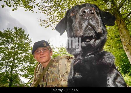 La plaine de Salisbury, Wiltshire, Royaume-Uni. 6e mai 2014. opération herrick 20 Journée des médias 6 mai 2014 Banque D'Images