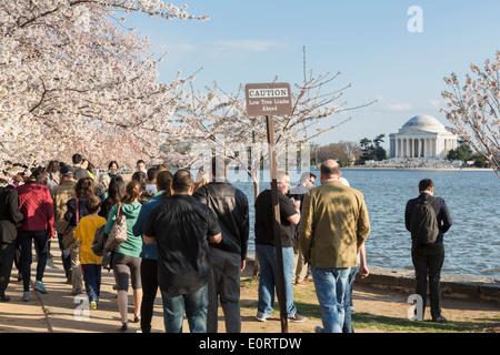 Les touristes à Washington DC, USA au printemps à la base de la marée pour le National Cherry Blossom Festival