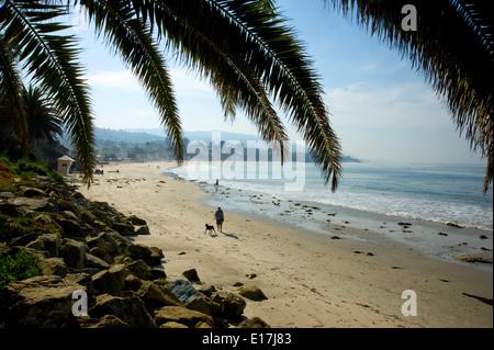 Man Walking dog sur Laguna Beach à Orange County, Californie Banque D'Images