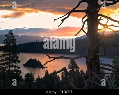 Lever de soleil sur l'Emerald Bay avec arbre mort et Fannette Island, Lake Tahoe, en Californie. Banque D'Images