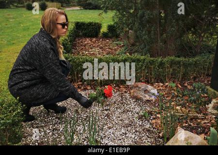 Vue latérale du jeune femme plaçant rose rouge sur la tombe d'un membre de sa famille au cimetière. Femme vêtue Banque D'Images