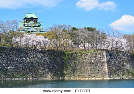 Le Château d'Osaka et de cerisiers en fleurs au printemps, à Osaka au Japon Banque D'Images