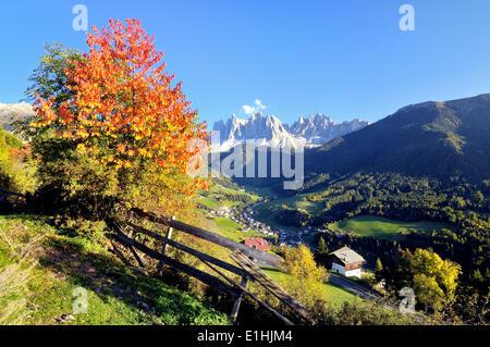 L'automne dans le Val di Funes vallée avec les Pics Geisler dans les Dolomites, Val di Funes, la province de Bolzano, Banque D'Images