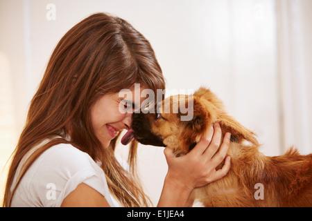 Jeune femme ayant visage léché par chien Banque D'Images