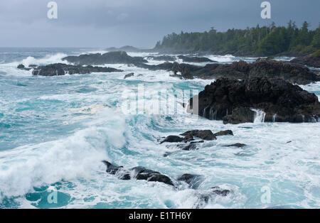 Storm vue du sentier Wild Pacific à Ucluelet, C.-B., Canada Banque D'Images