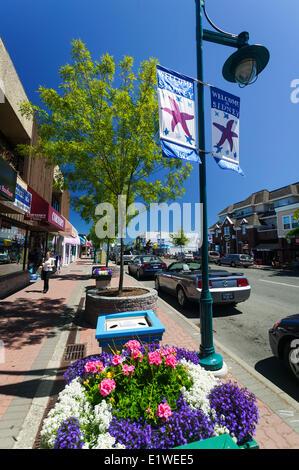 Beacon Ave, Sidney's Main Street est une merveilleuse expérience de marche, errant parmi les boutiques, restaurants et éclectique numero