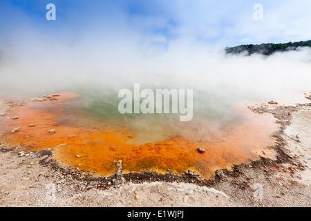 Champagne Pool dans le Wai-O-Tapu (eaux sacrées) Thermal Wonderland en Nouvelle-Zélande - la piscine tire son nom Banque D'Images
