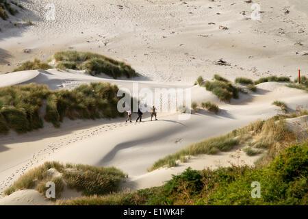 Les randonneurs dans les dunes de phlébotome Bay sur la péninsule d'Otago près de Dunedin, Nouvelle-Zélande