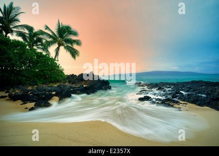 Plage isolée avec des palmiers et le lever du soleil. Maui, Hawaii