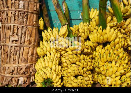 L'Inde, Etat du Kerala, Trivandrum, Kerala Thiruvananthapuram ou capital, marché de fruits Banque D'Images